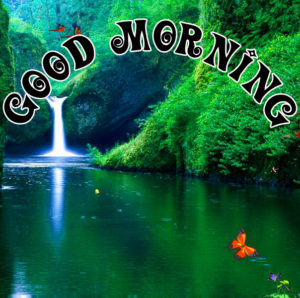Special Good Morning Images pictures pics download