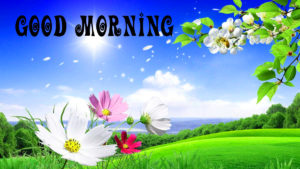 Special Good Morning Images photo pictures hd