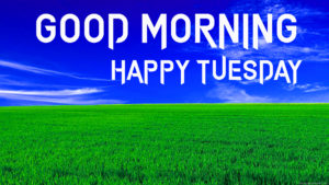Tuesday Good Morning Images photo pictures hd