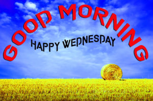 Wednesday Good Morning Images pictures photo hd