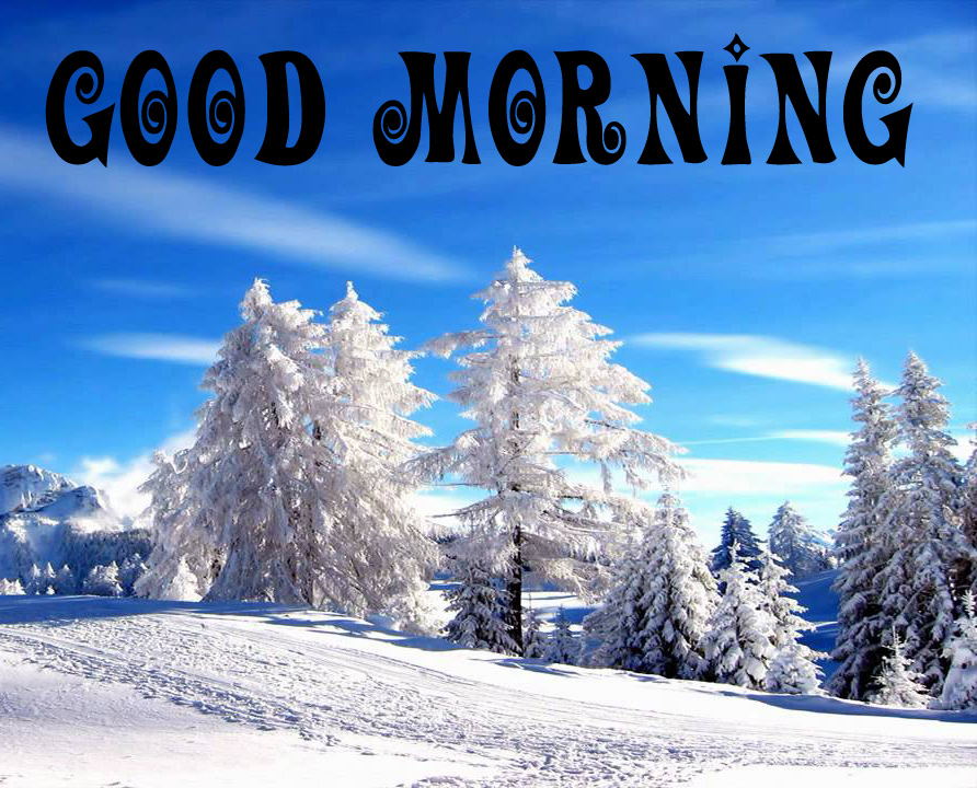 142+ Winter Good morning Images Photo Pics Download