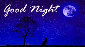 Good Night Images HD Photo Pictures Download
