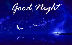Good Night Images HD Pictures Images Photo HD