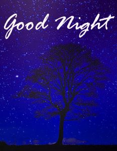 Good Night Images HD Wallpaper Pictures Photo Download