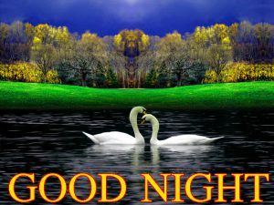 Beautiful Nature Good Night Wishes Images Wallpaper Pics Free Download