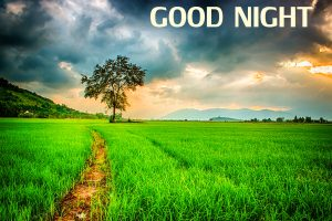 Beautiful Nature Good Night Wishes Images Wallpaper Pics Free