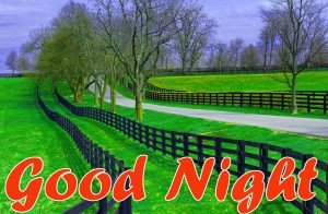 Good Night Images Wallpaper pics With Beautiful Nature