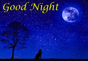 Good Night Images Wallpaper Pics Free