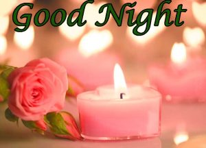 Good Night Images Photo With Rose