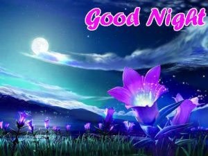 Good Night Images Wallpaper With Nature