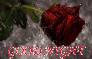 Good Night Images Wallpaper pics Free for Facebook