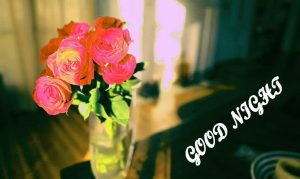 Beautiful Good Night Images  Wallpaper Pictures Download