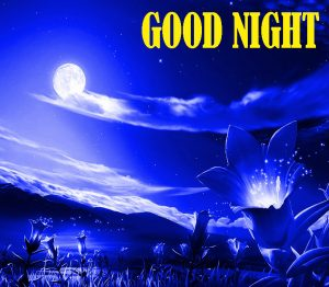 Beautiful Good Night Images Wallpaper Pics Free HD Download