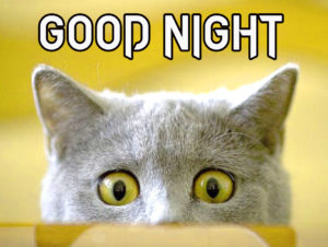 Very funny good night images pics photo download