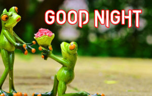 Very funny good night images photo wallpaper free hd
