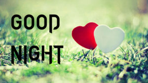 Love Good Night Images pictures photo hd download