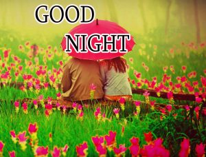 Good Night Wishes / Gud Night Images Photo Wallpaper Download