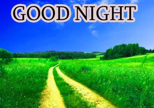 Good Night Wishes / Gud Night Images Wallpaper Pics HD Download