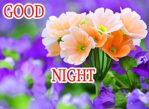 Good Night Wishes / Gud Night Images Wallpaper Pics With Flower