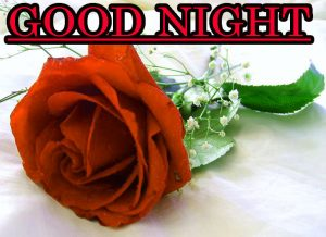 Good Night Wishes / Gud Night Images Wallpaper Pic for Facebook