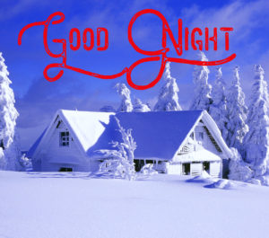 Beautiful Winter Good Night Images photo wallpaper free download