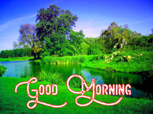 Gud Morning Images wallpaper pictures photo hd download