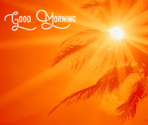 Good Morning Sunshine Images wallpaper pictures free hd download