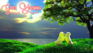 Gud Morning Images wallpaper photo download