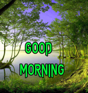 Good Morning Beautiful Images photo for whastapp
