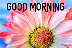 Good Morning Beautiful Images wallpaper pics for Friend