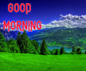 Good Morning Beautiful Images photo pics download