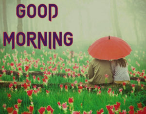 Romantic Good Morning Images wallpaper pics download