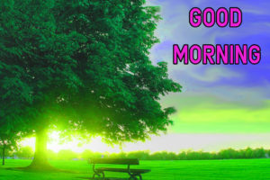 Top Good Morning Images wallpaper for girlfriend
