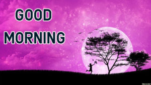 Top Good Morning Images photo download