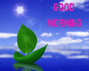 Top Good Morning Images photo for friend