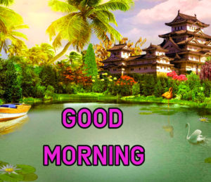 Top Good Morning Images wallpaper for whatsapp