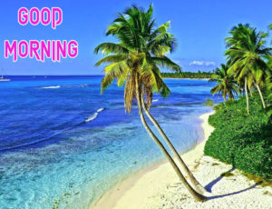 Top Good Morning Images wallpaper picture download
