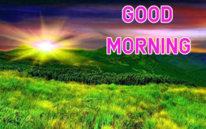 Top Good Morning Images wallpaper download