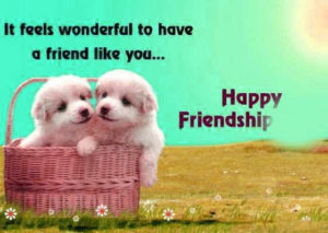 cute whatsapp dp for friends group Images photo pics download