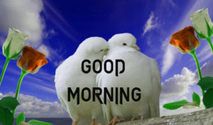 New Good Morning Images photo pics for best friend