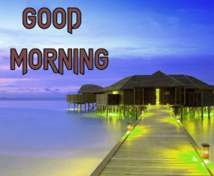 New Good Morning Images photo for free