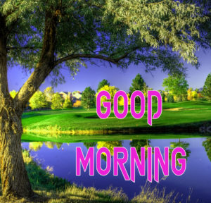 New Good Morning Images  photo for friend