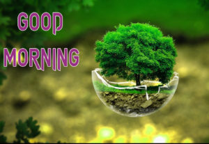 New Good Morning Images picture for best friend