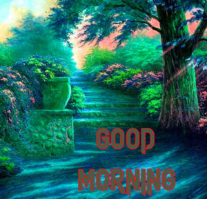 New Good Morning Images  photo for lover