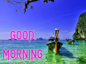 New Good Morning Images  wallpaper pics