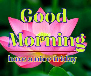 Friday Good Morning Images 1 1