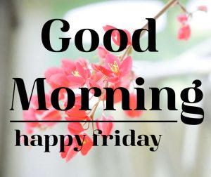 Friday Good Morning Images 11 1