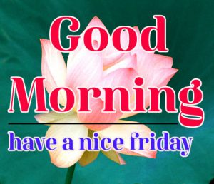 Friday Good Morning Images 2 1