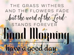 Good Morning Bible Quotes Images 15