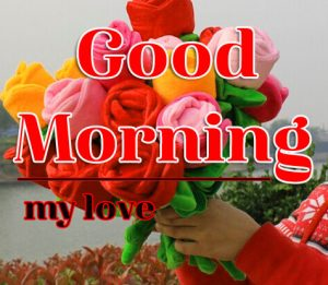 Good Morning Flower Images 11